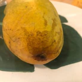 Dark streaks on your mango's skin