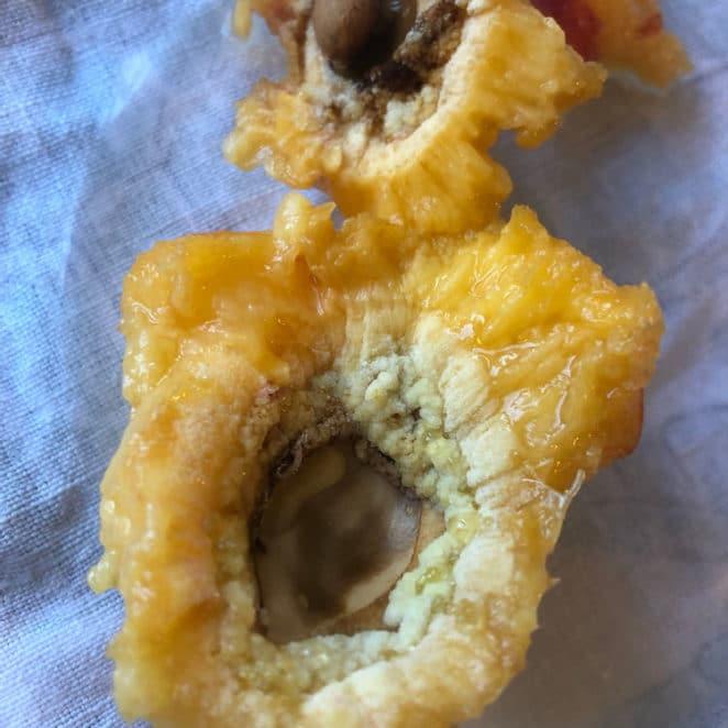 Peach with split pit; weird inside
