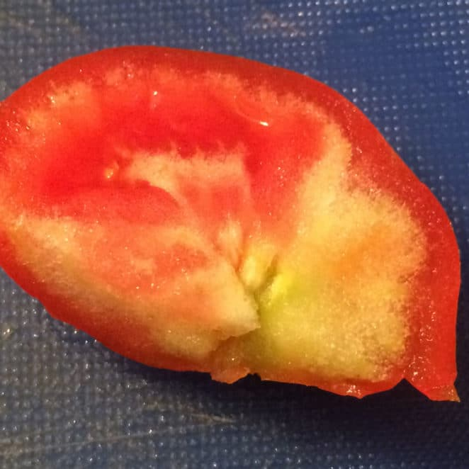 Tomato with a hard, white area. It's entirely edible though the hard area won't taste good.