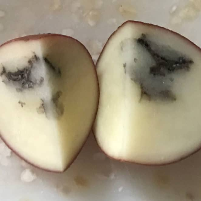 black inside potatoes can still be safe to eat