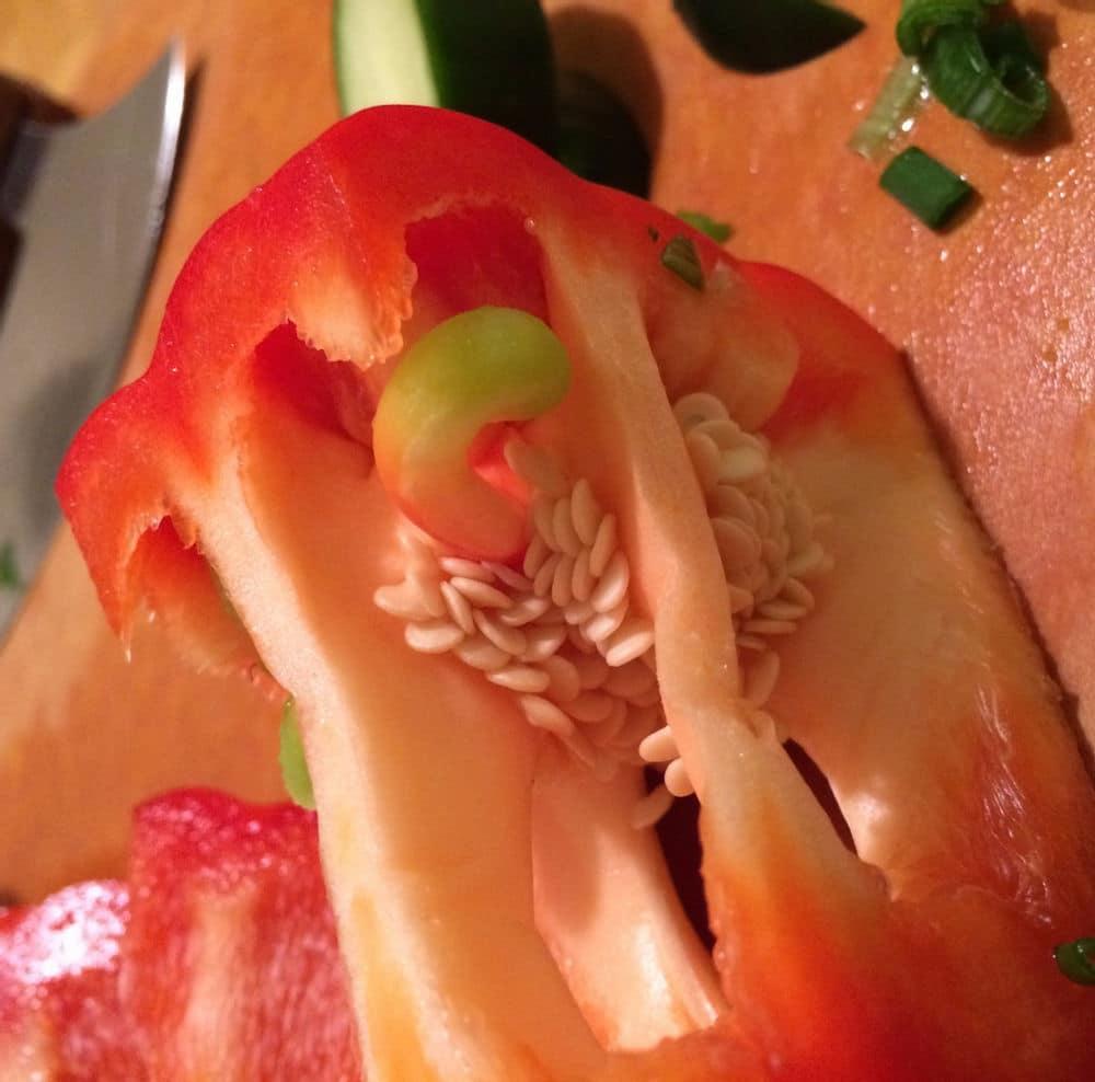 Carpelloid structure in pepper