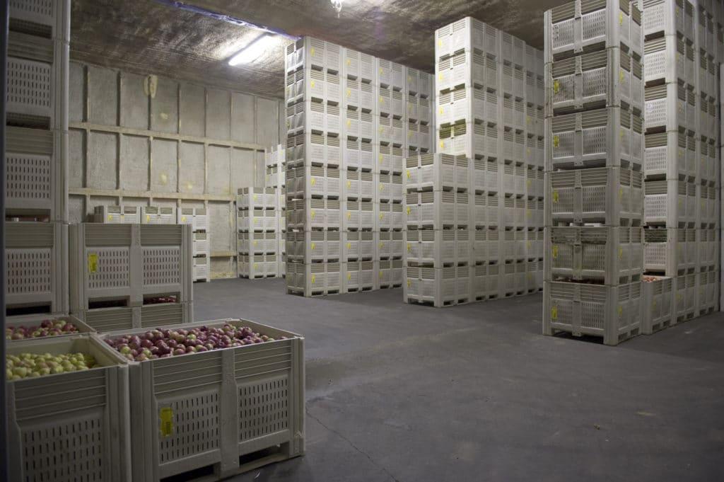 Apple storage room