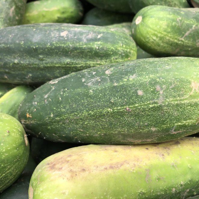 dirty farmers market cucumbers